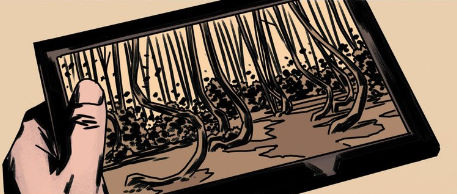 IDW_ongoing_6_forest